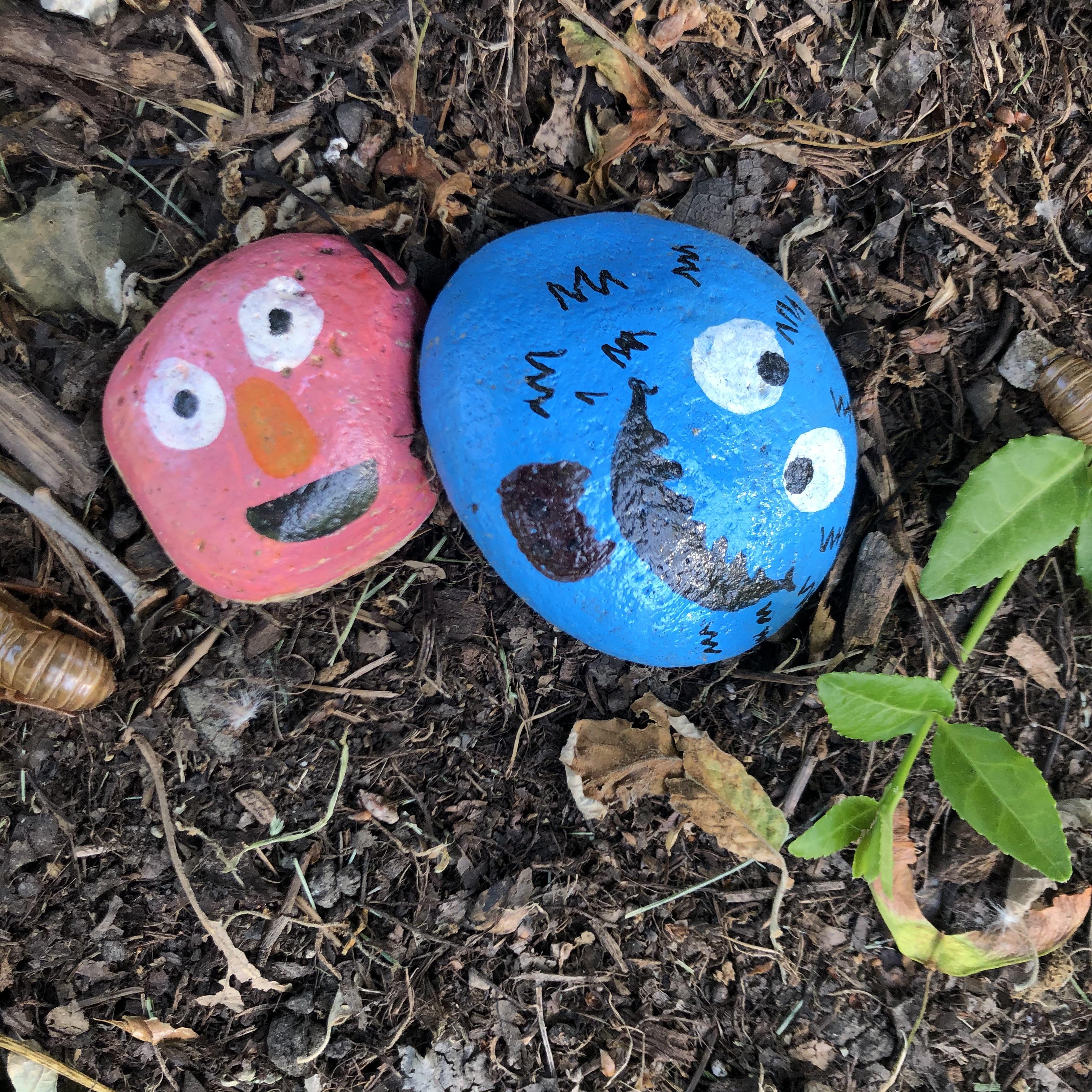 Happy rocks