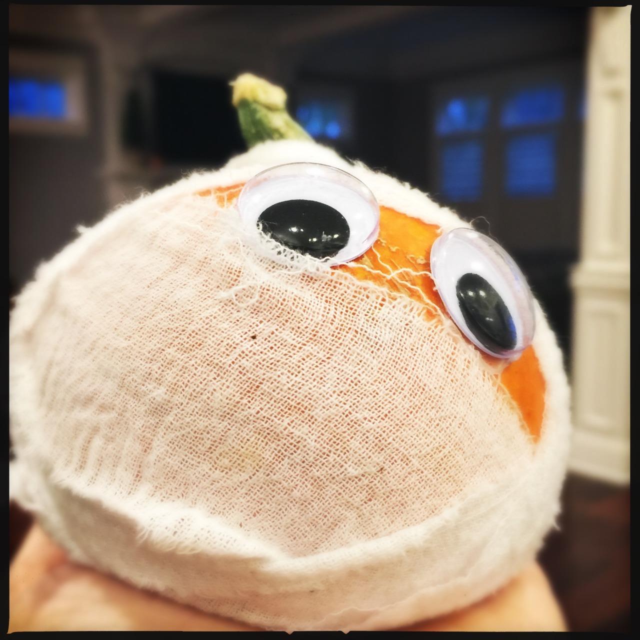 Pumpkin mummy